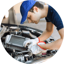 Customer survey: Motor Vehicle Services