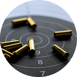 Customer survey: Private Arms Dealers